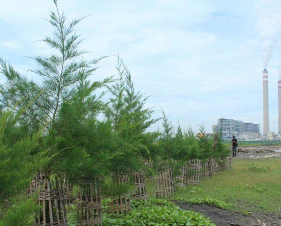 Yayasan IKAMaT Bermitra dengan PLN Tanjung Jati, Jepara