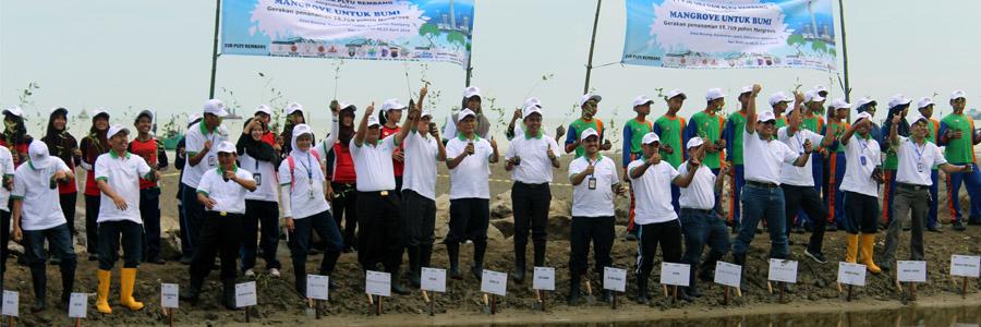 IKAMaT Hadiri Penanaman 18.709 Mangrove CV KeMANGI dan PJB Rembang di Desa Bonang
