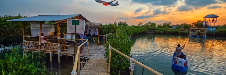 Maroon MEP, Taman Pendidikan Mangrove Terpopuler di Semarang