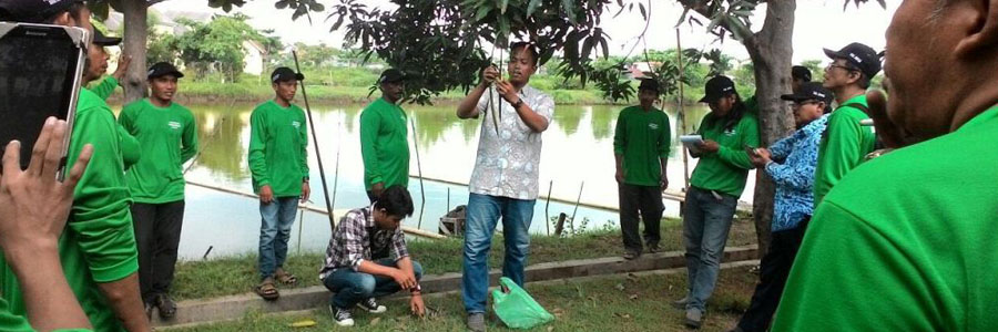 IKAMaT Berikan Pelatihan Mangrove Kepada Penyuluh dan POKMASWAS Jepara