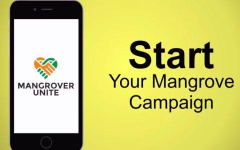 IKAMaT Kembangkan Mangrover Unite, Aplikasi Penggalangan-Dana Mangrove, Pertama di Indonesia