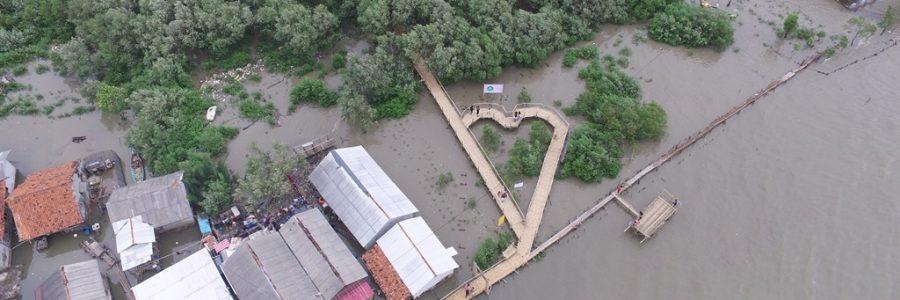 IKAMaT dan Pertamina EP ASSET 3 Tambun Field Sukses Garap Ekowisata Mangrove di Bekasi