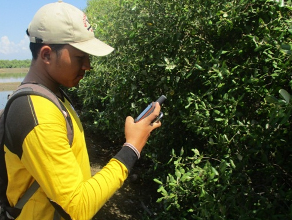 Pelatihan Analisis Vegetasi dan Tutupan Tajuk Mangrove